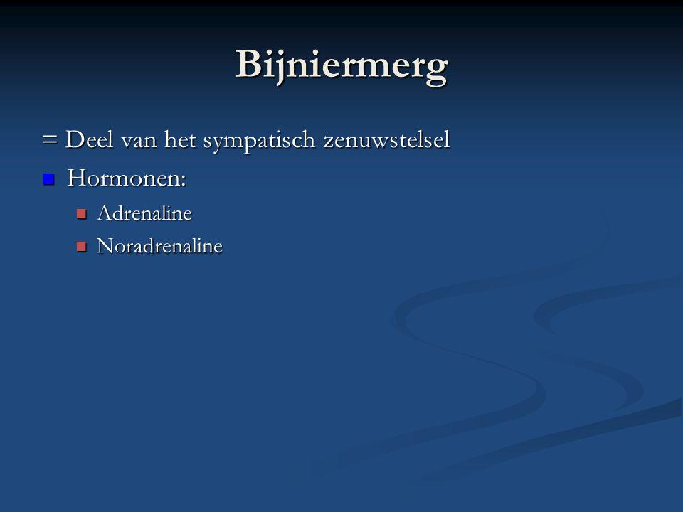 Bijniermerg = Deel van het sympatisch zenuwstelsel Hormonen: Hormonen: Adrenaline Adrenaline Noradrenaline Noradrenaline