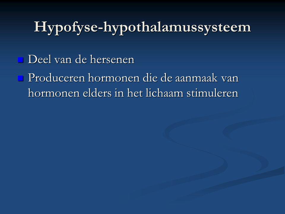 Hypofyse-hypothalamussysteem Deel van de hersenen Deel van de hersenen Produceren hormonen die de aanmaak van hormonen elders in het lichaam stimulere