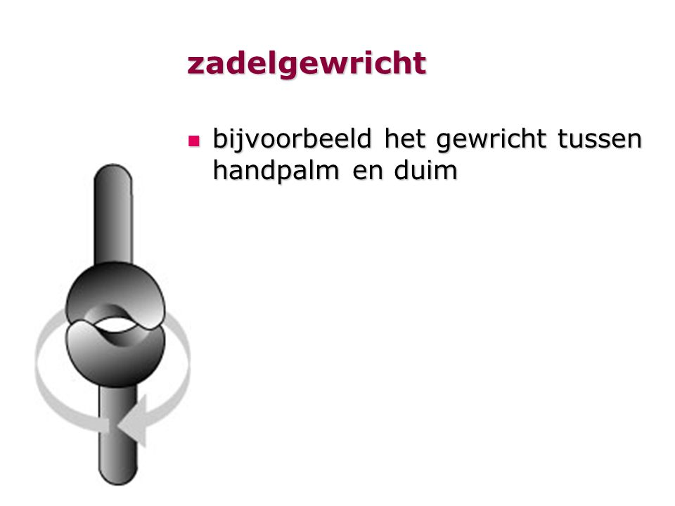 zadelgewricht bijvoorbeeld het gewricht tussen handpalm en duim bijvoorbeeld het gewricht tussen handpalm en duim