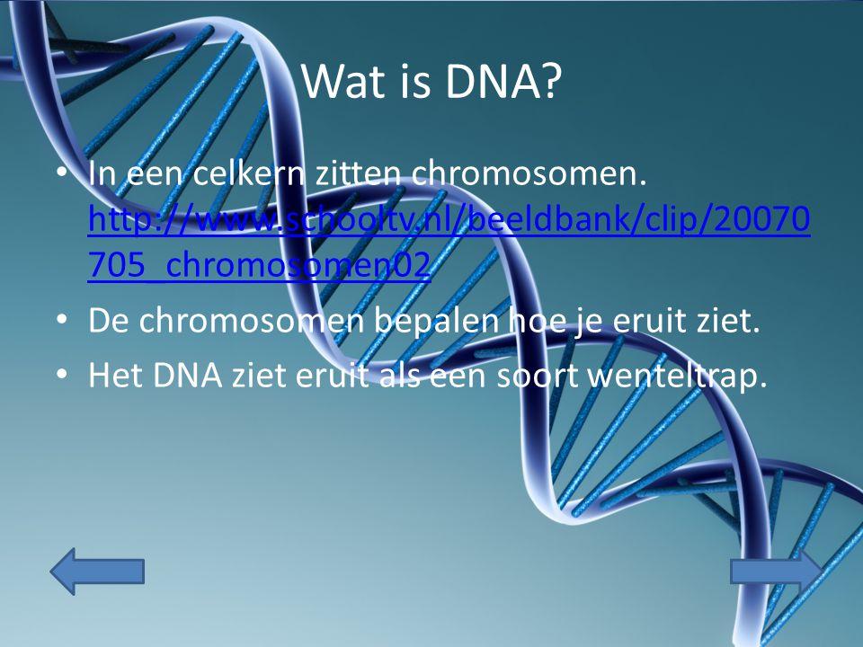 Wat is een gen.Een stukje wenteltrap van het DNA dat één eigenschap veroorzaakt noemen we een gen.