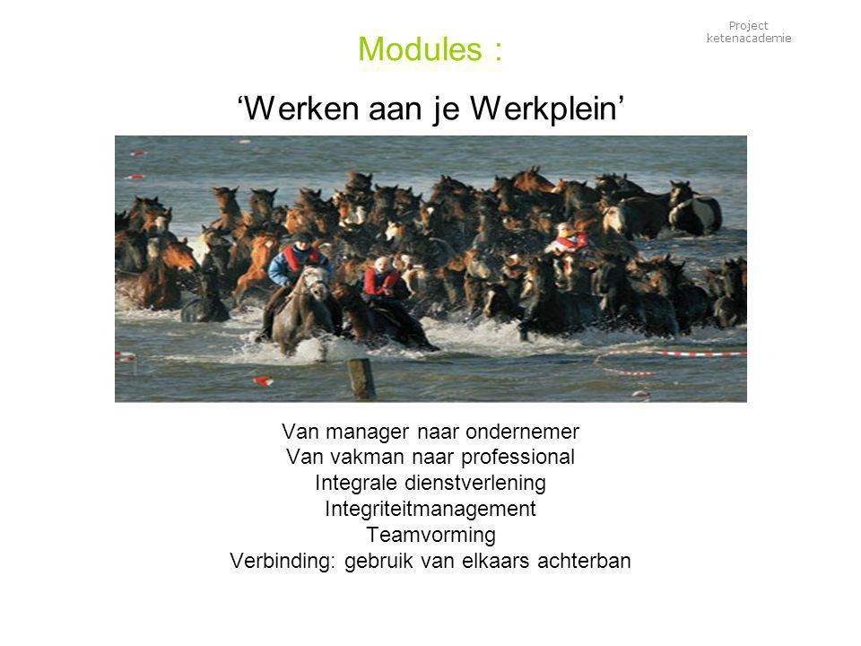 Project ketenacademie Modules : 'Werken aan je Werkplein' Van manager naar ondernemer Van vakman naar professional Integrale dienstverlening Integriteitmanagement Teamvorming Verbinding: gebruik van elkaars achterban