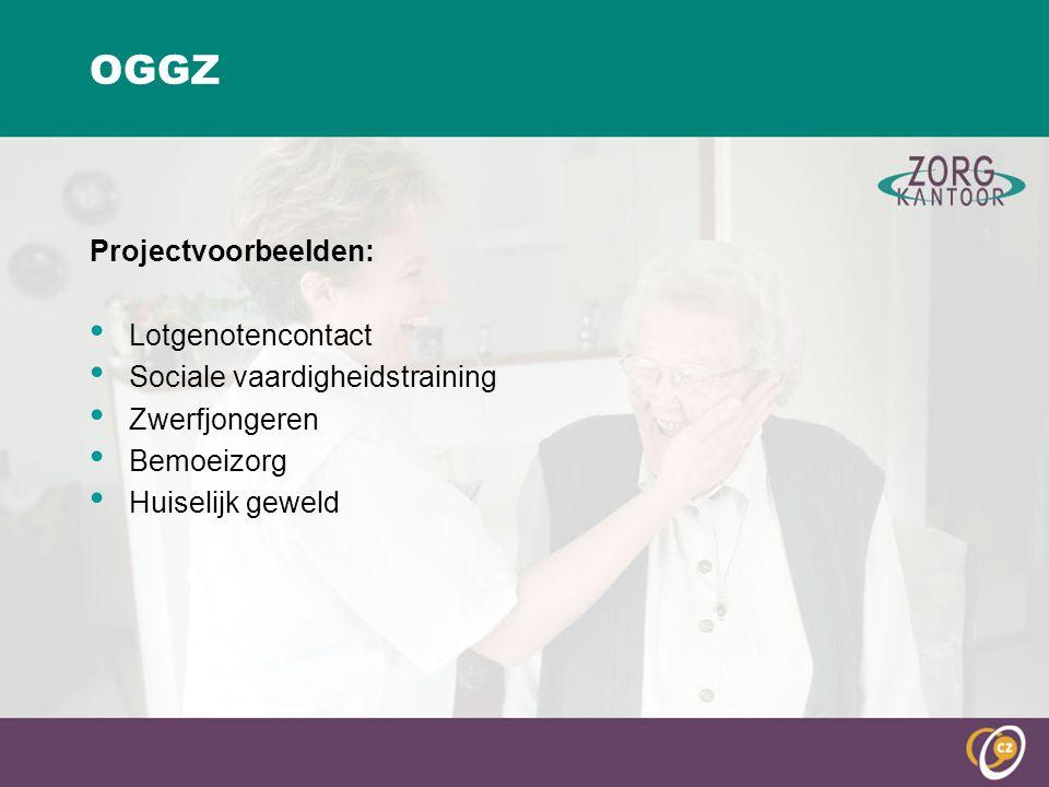 OGGZ Projectvoorbeelden: Lotgenotencontact Sociale vaardigheidstraining Zwerfjongeren Bemoeizorg Huiselijk geweld