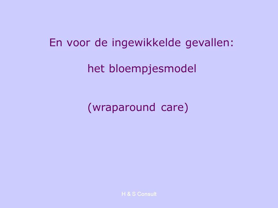 H & S Consult En voor de ingewikkelde gevallen: het bloempjesmodel (wraparound care)