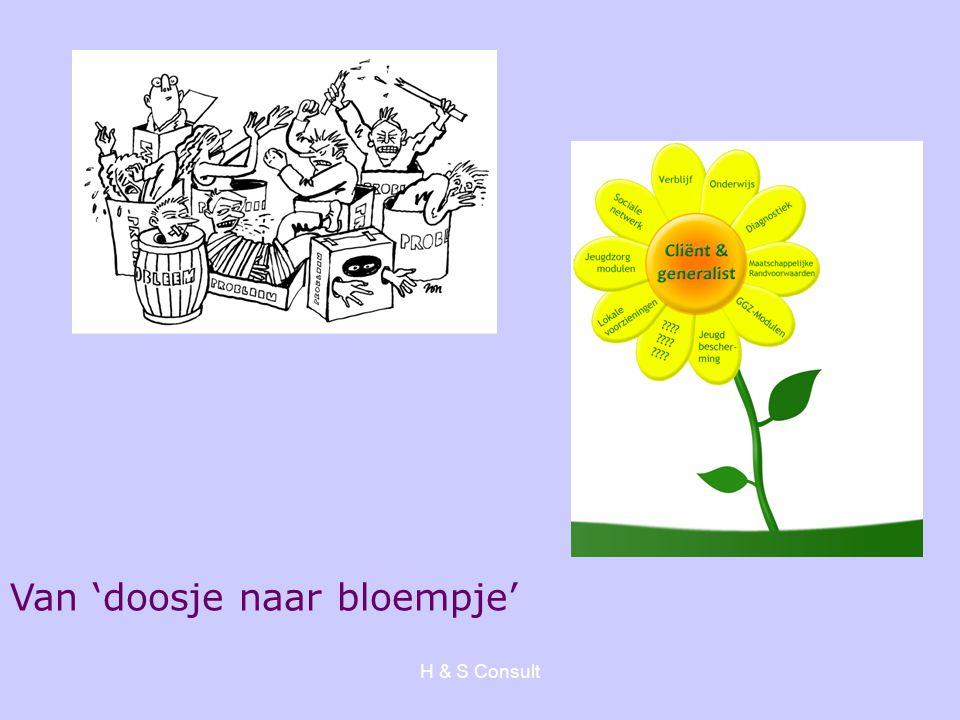 H & S Consult Van 'doosje naar bloempje'