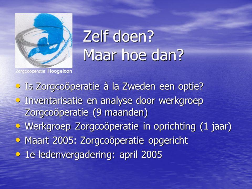 Zorgcoöperatie Hoogeloon Zelf doen. Maar hoe dan.