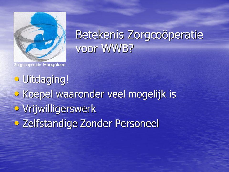 Zorgcoöperatie Hoogeloon Betekenis Zorgcoöperatie voor WWB.