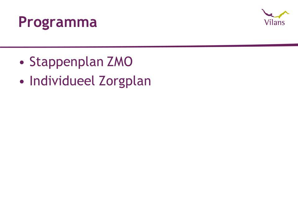 Programma Stappenplan ZMO Individueel Zorgplan