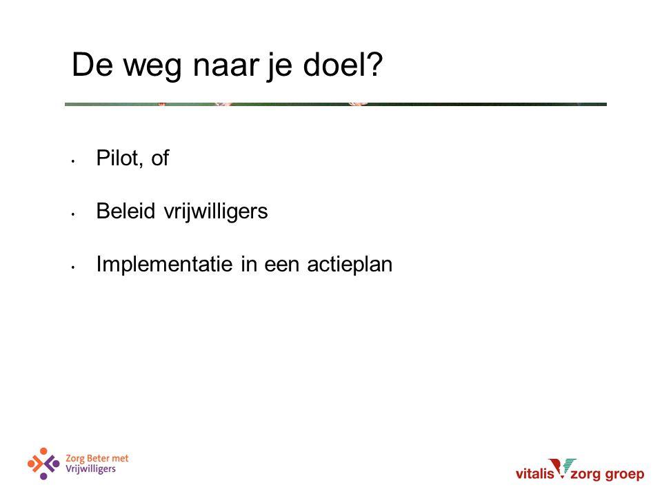 Pilot, of Beleid vrijwilligers Implementatie in een actieplan De weg naar je doel