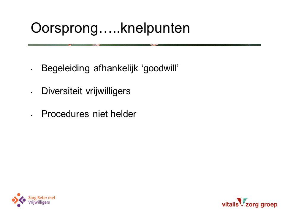 Begeleiding afhankelijk 'goodwill' Diversiteit vrijwilligers Procedures niet helder Oorsprong…..knelpunten