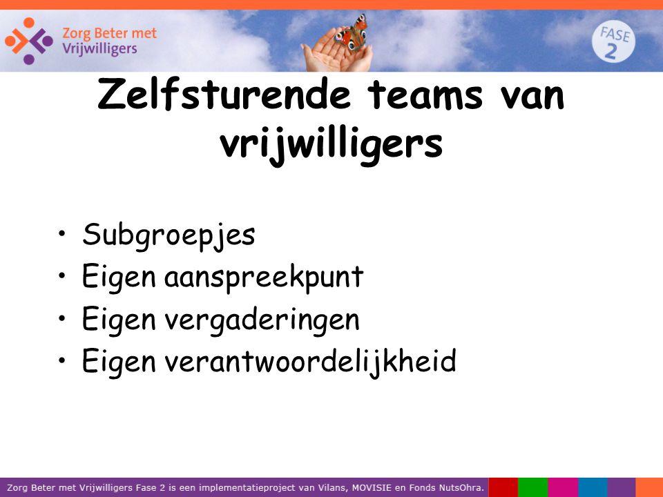 Zelfsturende teams van vrijwilligers Subgroepjes Eigen aanspreekpunt Eigen vergaderingen Eigen verantwoordelijkheid