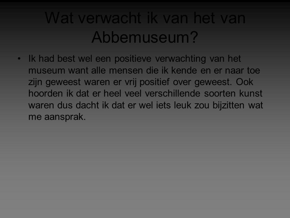 Wat verwacht ik van het van Abbemuseum? Ik had best wel een positieve verwachting van het museum want alle mensen die ik kende en er naar toe zijn gew