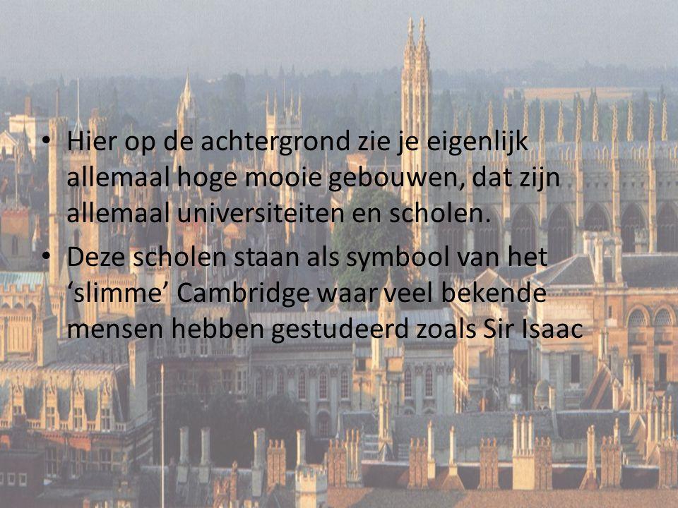 Hier op de achtergrond zie je eigenlijk allemaal hoge mooie gebouwen, dat zijn allemaal universiteiten en scholen. Deze scholen staan als symbool van