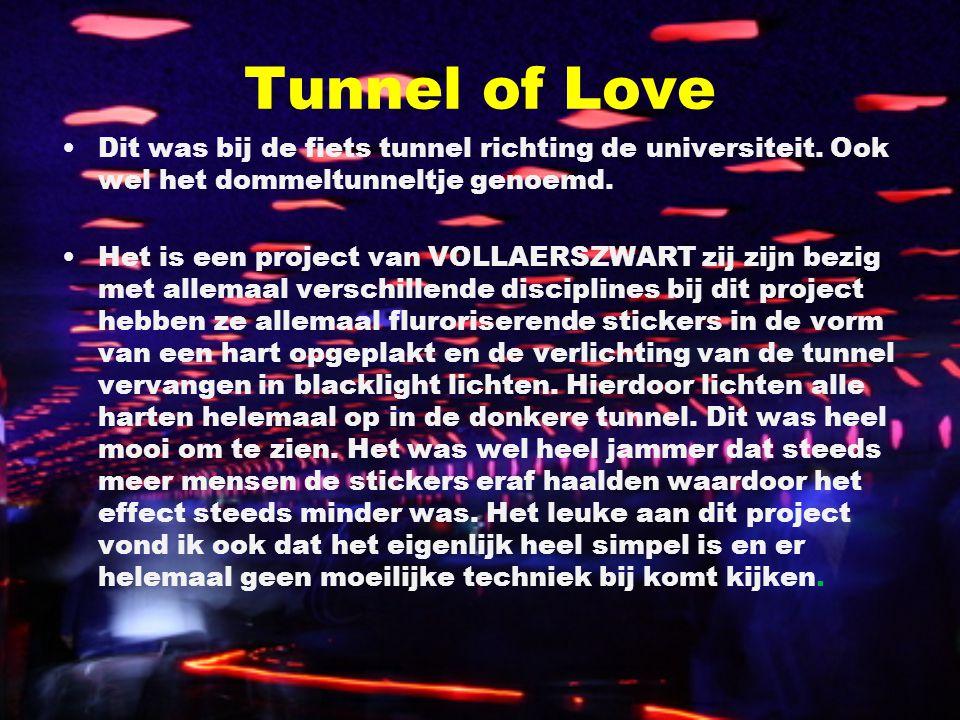 Tunnel of Love Dit was bij de fiets tunnel richting de universiteit. Ook wel het dommeltunneltje genoemd. Het is een project van VOLLAERSZWART zij zij