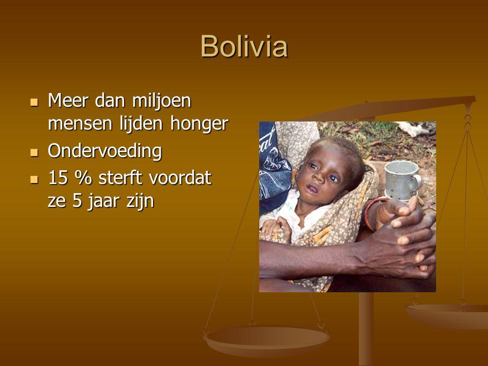 Bolivia Meer dan miljoen mensen lijden honger Meer dan miljoen mensen lijden honger Ondervoeding Ondervoeding 15 % sterft voordat ze 5 jaar zijn 15 %