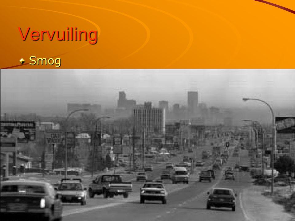 Het centrum van de stad Wolkenkrabbers Meer dan 24 miljoen inwoners!!!Meer dan 24 miljoen inwoners!!.