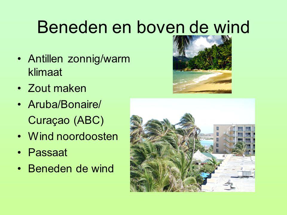 Beneden en boven de wind Antillen zonnig/warm klimaat Zout maken Aruba/Bonaire/ Curaçao (ABC) Wind noordoosten Passaat Beneden de wind