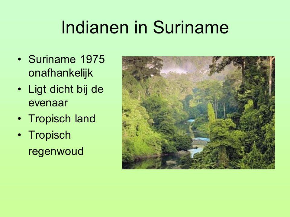Indianen in Suriname Suriname 1975 onafhankelijk Ligt dicht bij de evenaar Tropisch land Tropisch regenwoud