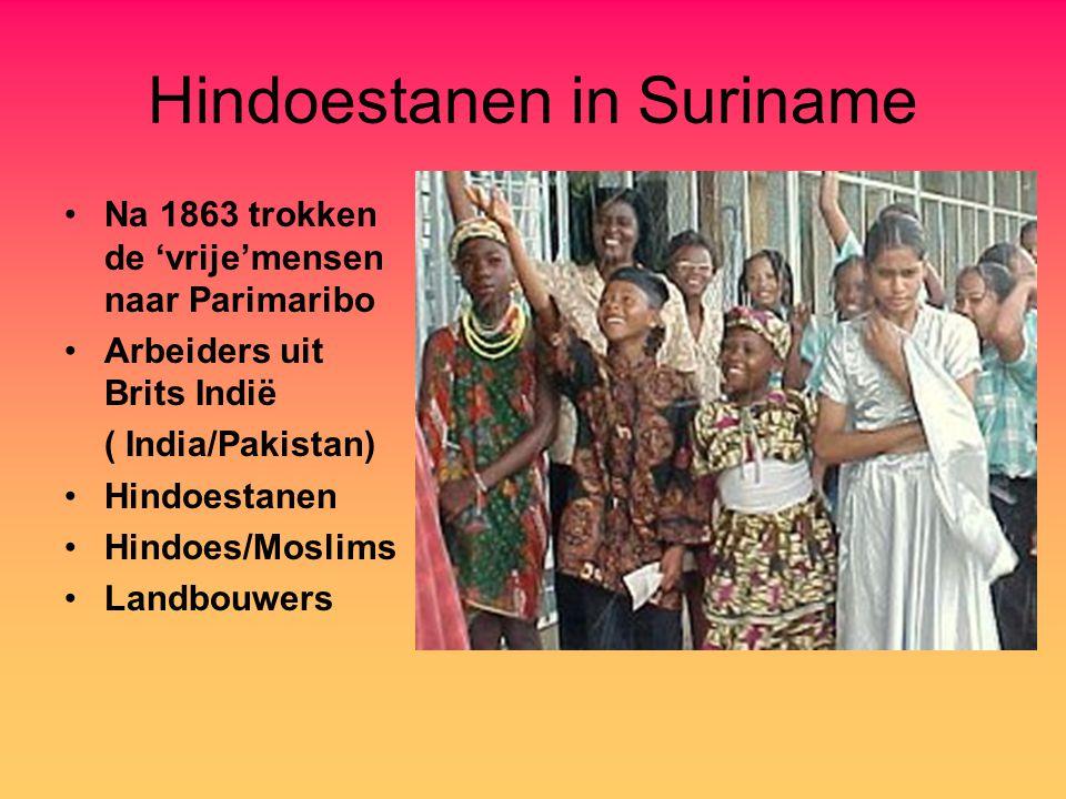Hindoestanen in Suriname Na 1863 trokken de 'vrije'mensen naar Parimaribo Arbeiders uit Brits Indië ( India/Pakistan) Hindoestanen Hindoes/Moslims Lan
