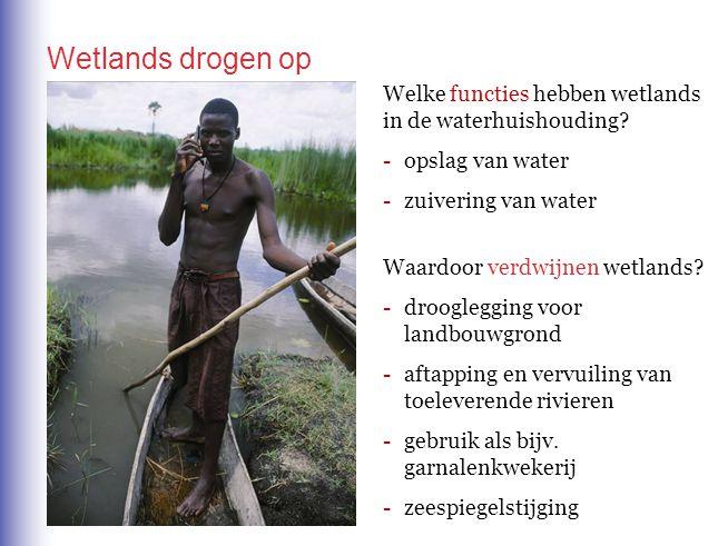 Welke functies hebben wetlands in de waterhuishouding? -opslag van water -zuivering van water Waardoor verdwijnen wetlands? -drooglegging voor landbou
