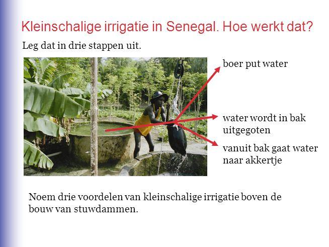boer put water water wordt in bak uitgegoten vanuit bak gaat water naar akkertje Leg dat in drie stappen uit. Kleinschalige irrigatie in Senegal. Hoe