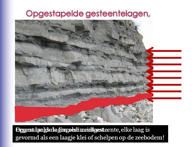 Opgestapelde lagen sedimentgesteente, elke laag is gevormd als een laagje klei of schelpen op de zeebodem! Ergens langs de Engelse zuidkust… Welke laa
