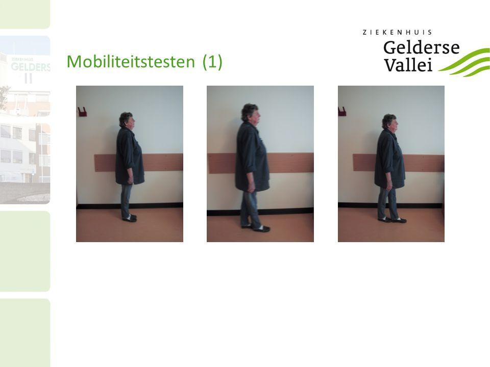 Mobiliteitstesten (1)
