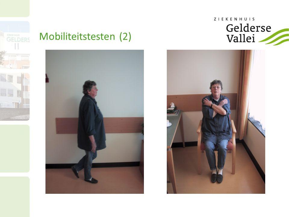 Mobiliteitstesten (2)