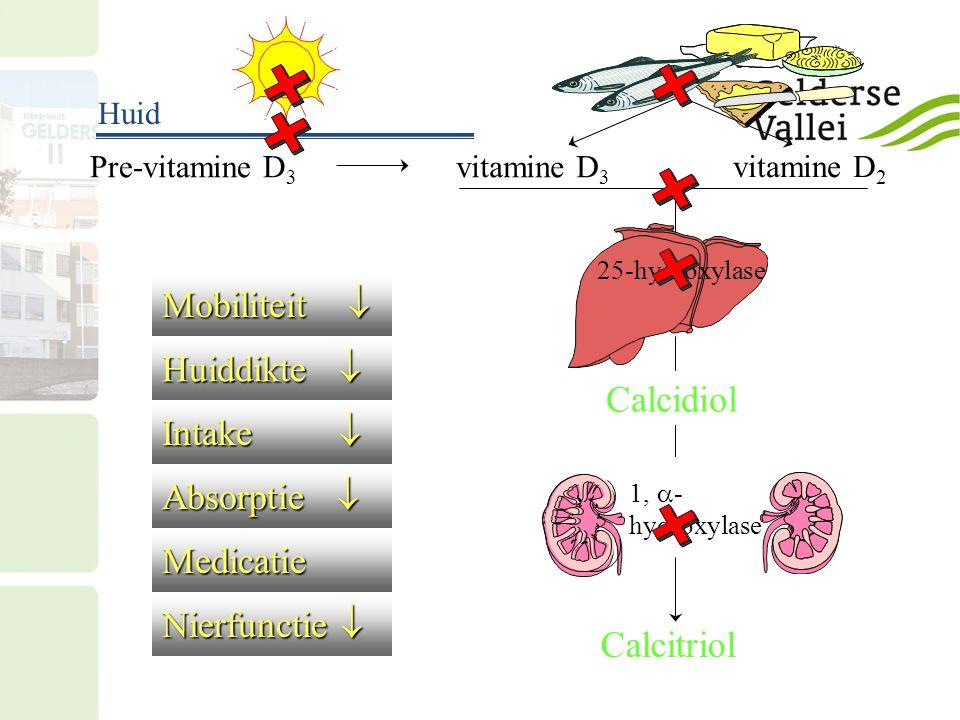 Huid Pre-vitamine D 3 vitamine D 3 vitamine D 2 Calcidiol 25-hydroxylase 1,  - hydroxylase Calcitriol Mobiliteit  Huiddikte  Nierfunctie  Medicatie Absorptie  Intake 