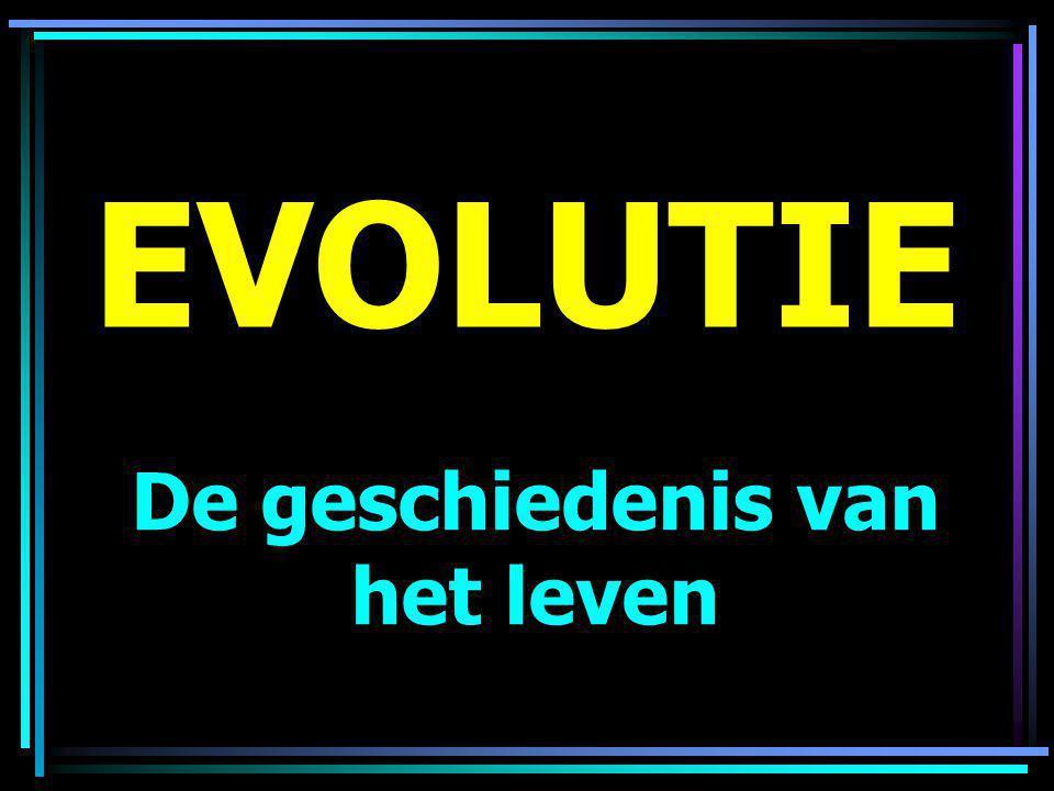 EVOLUTIE De geschiedenis van het leven