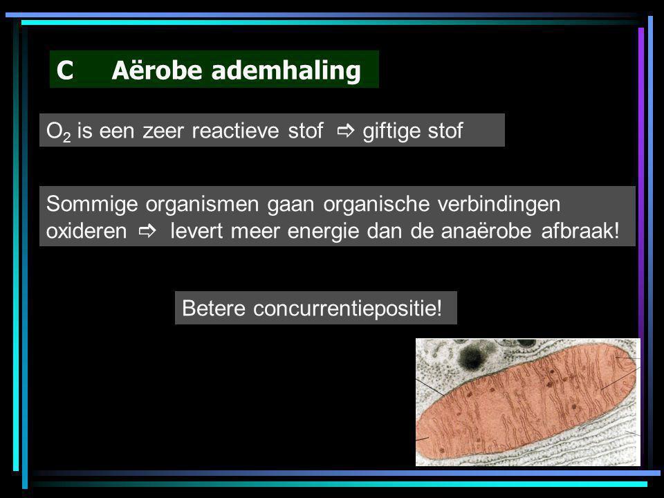 C Aërobe ademhaling O 2 is een zeer reactieve stof  giftige stof Sommige organismen gaan organische verbindingen oxideren  levert meer energie dan d