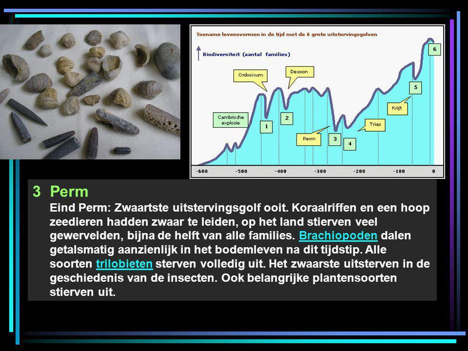 3Perm Eind Perm: Zwaartste uitstervingsgolf ooit. Koraalriffen en een hoop zeedieren hadden zwaar te leiden, op het land stierven veel gewervelden, bi