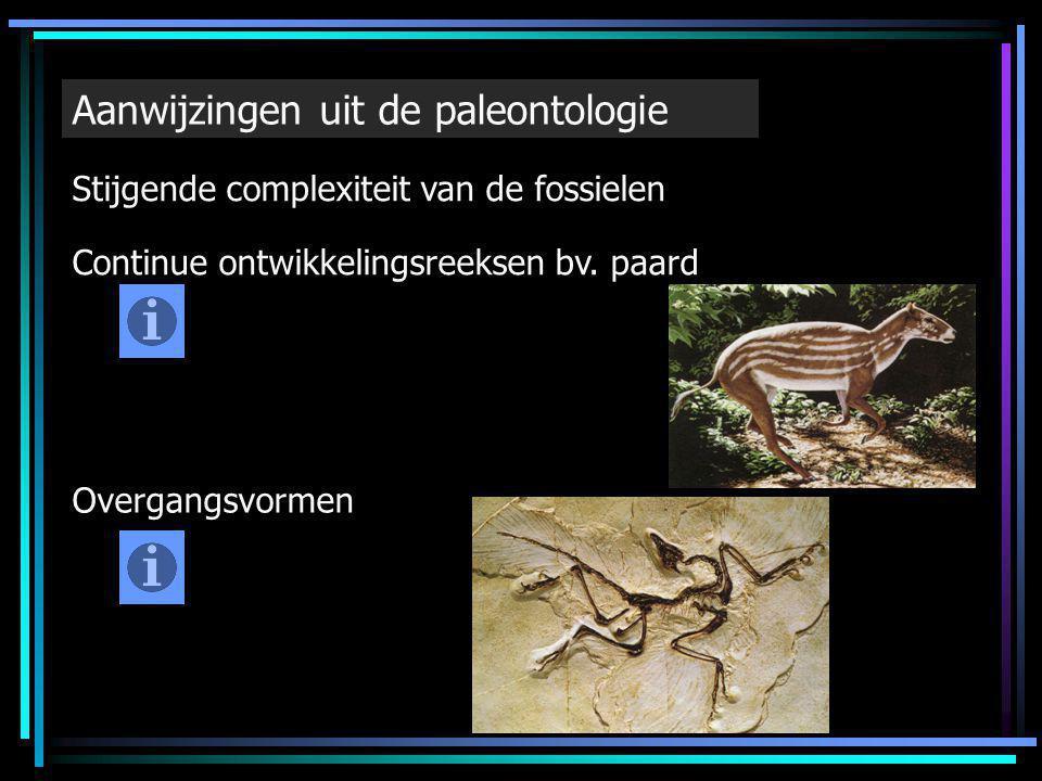 Aanwijzingen uit de paleontologie Stijgende complexiteit van de fossielen Continue ontwikkelingsreeksen bv. paard Overgangsvormen