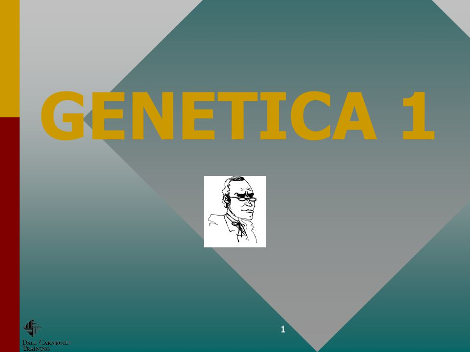 21 E.Genotype / fenotypeE.