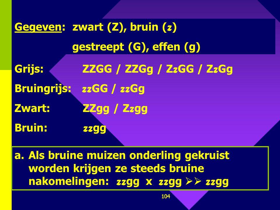 103 a.Zullen bruine muizen enkel bruine nakomelingen kunnen krijgen? b.Een homozygoot bruingrijze muis wordt gekruist met een homozygoot grijze muis.