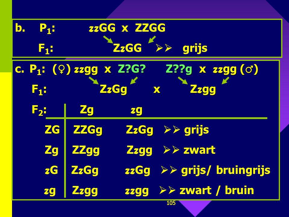 104 Gegeven: zwart (Z), bruin ( z ) gestreept (G), effen (g) Grijs: ZZGG / ZZGg / Z z GG / Z z Gg Bruingrijs: zz GG / zz Gg Zwart: ZZgg / Z z gg Bruin