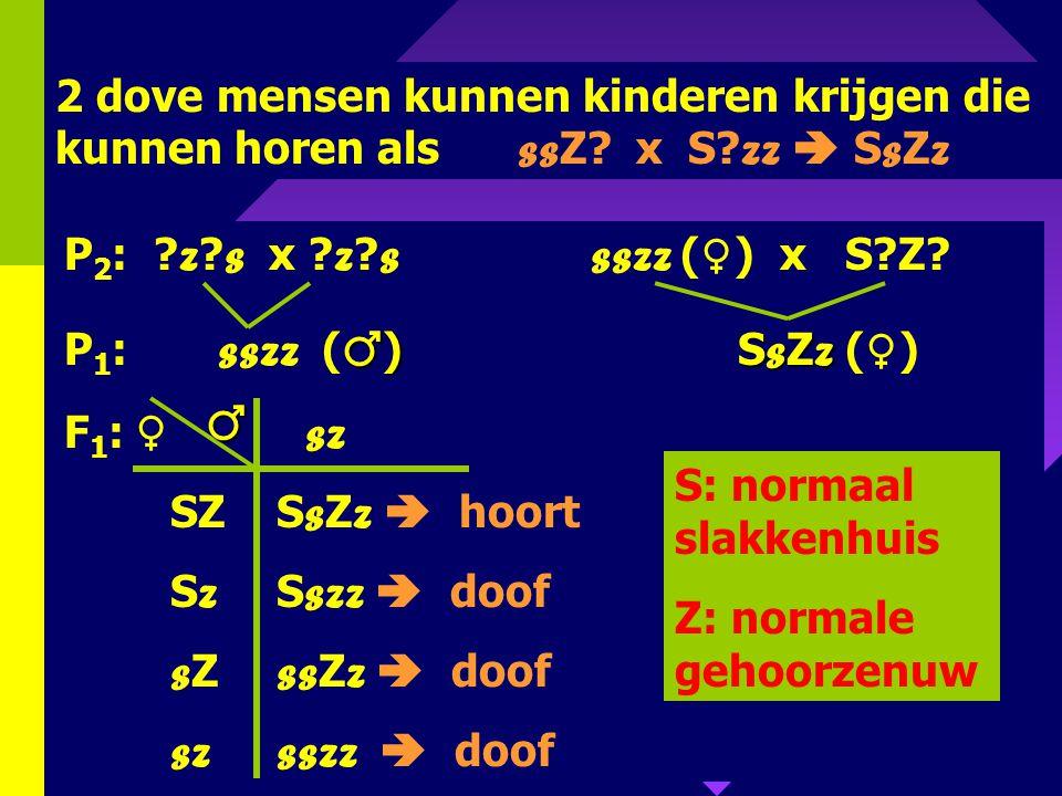 107 2. Bij de mens is een dominant allel noodzakelijk voor de ontwikkeling van een normaal slakkenhuis in het inwendige oor. Een dominant allel van ee