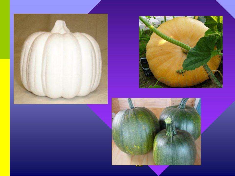 111 5. Bij pompoenen bestaan er witte, groene en gele variëteiten. Bij een bepaalde kruising werden planten gekweekt uit witte pompoenen, onderling ge