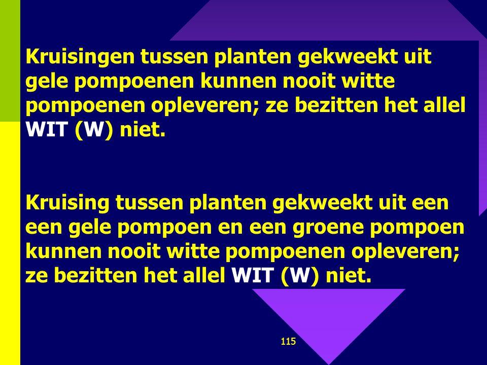 114 P 1 : Moet heterozygoot zijn voor beide allelen dus: W w Gg x W w Gg (of wit x wit) F1: WG Wg w G w g WG WWGG WWGg W w GG W w Gg Wg WWGg WWgg W w
