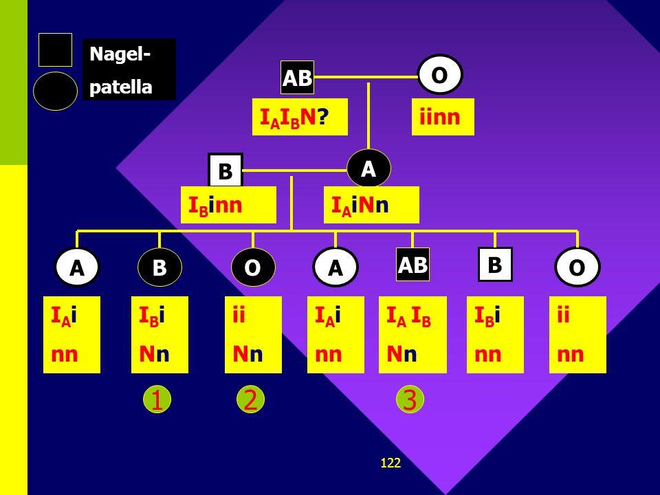 121 AB O B B A BO AO Nagel- patella A I A I B N?iinn I A ?N? I A ? nn I B ? N? ii N? I A ? nn I A I B N? I B ? nn ii nn I B ?nn 123