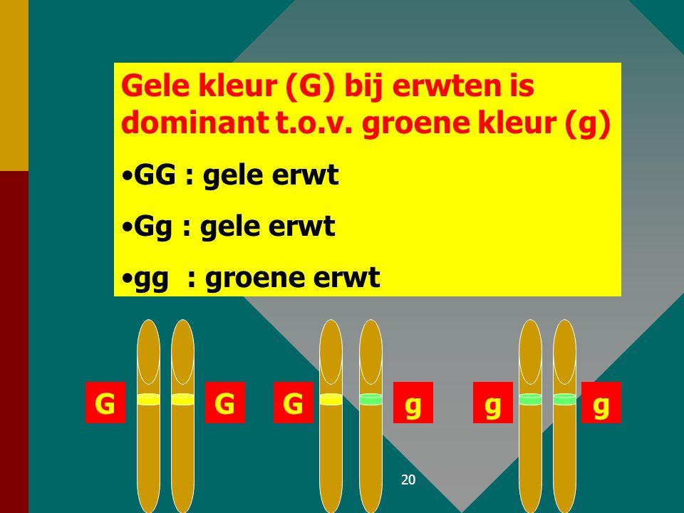 19 D. Dominant / recessiefD. Dominant / recessief –Dominant : het allel dat bij een heterozygoot tot uiting komt. Wordt aangeduid met hoofdletter. –Re