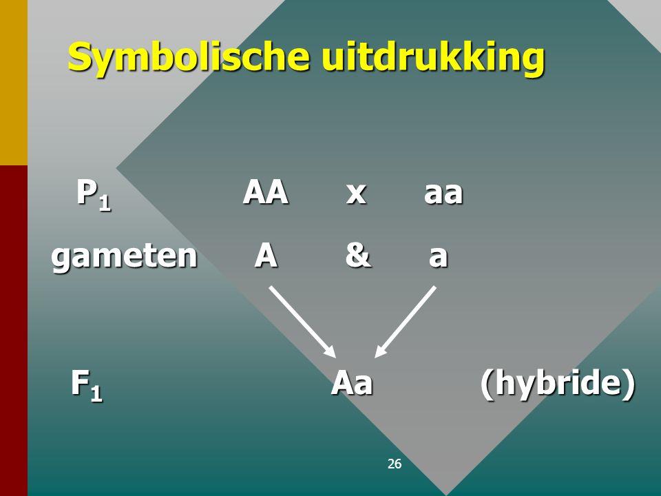25 B. 1 ste Mendelwet : Uniformiteitswet Bij een kruising van 2 individuen die in één eigenschap, waarvoor ze homozygoot zijn, verschillen (monohybrid