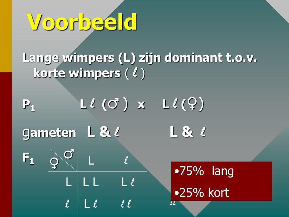 31 Voorbeeld: erwten F 1 X Gg Gg 75% geel F2 25% groen GG Gg Gg gg