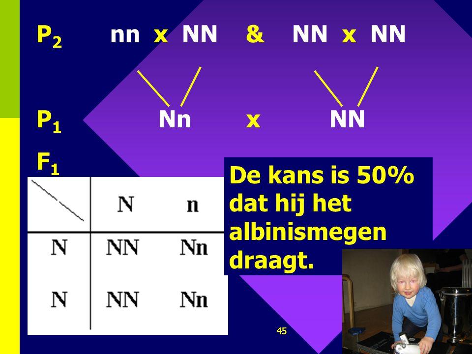 44 3. Albinisme is recessief. Een persoon is normaal gepigmenteerd, zijn ouders eveneens; één van zijn grootouders is albino; geen enkele van zijn and