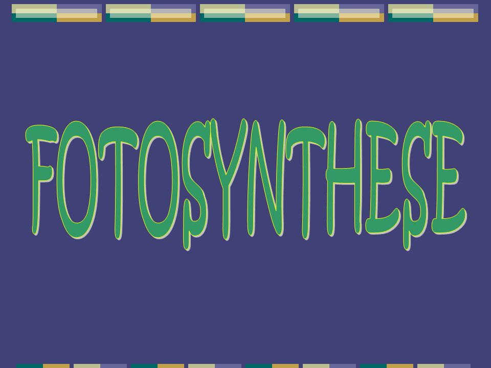 http://www.digischool.nl/bioplek/animaties/fotosynthese/fotosynthmodel.html