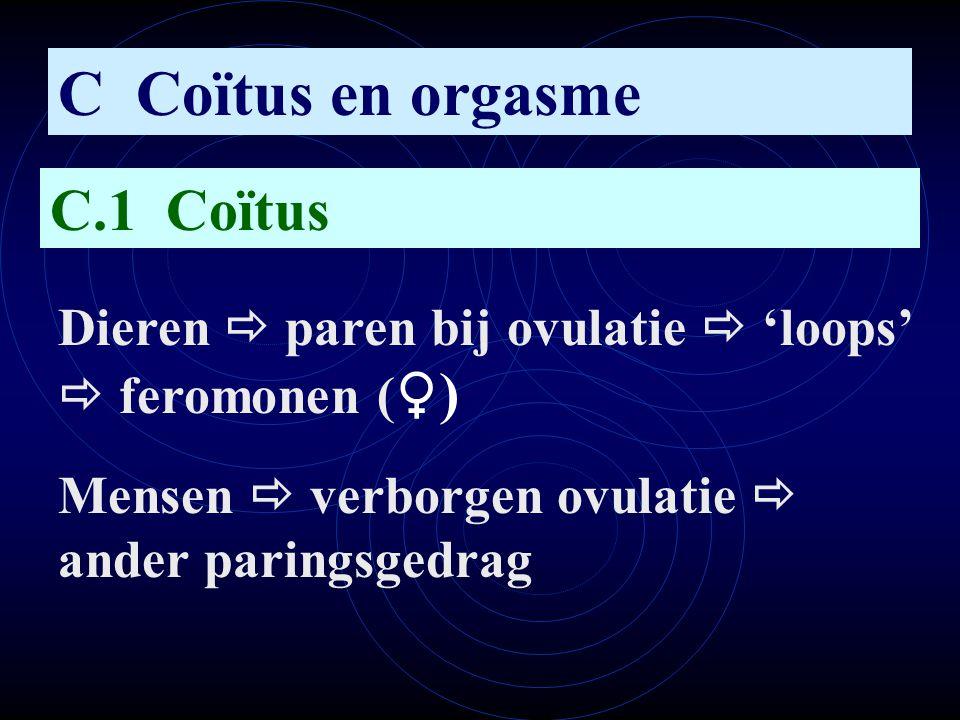 C Coïtus en orgasme C.1 Coïtus Dieren  paren bij ovulatie  'loops'  feromonen ( ♀ ) Mensen  verborgen ovulatie  ander paringsgedrag