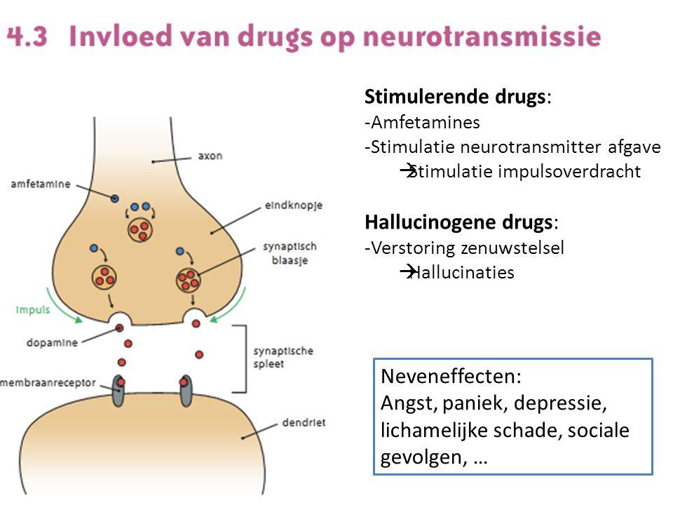 Stimulerende drugs: -Amfetamines -Stimulatie neurotransmitter afgave  Stimulatie impulsoverdracht Hallucinogene drugs: -Verstoring zenuwstelsel  Hallucinaties Neveneffecten: Angst, paniek, depressie, lichamelijke schade, sociale gevolgen, …