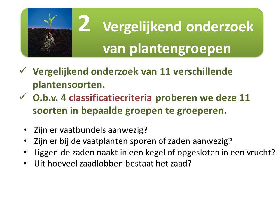 2 Vergelijkend onderzoek van plantengroepen Vergelijkend onderzoek van 11 verschillende plantensoorten. O.b.v. 4 classificatiecriteria proberen we dez
