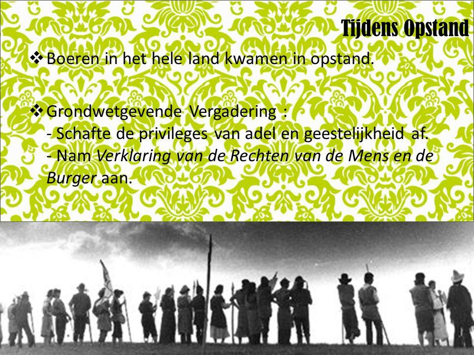 Tijdens Opstand  Boeren in het hele land kwamen in opstand.  Grondwetgevende Vergadering : - Schafte de privileges van adel en geestelijkheid af. -