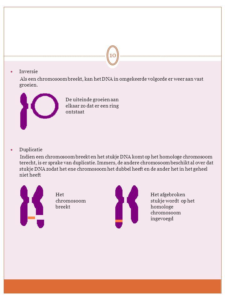 Inversie Als een chromosoom breekt, kan het DNA in omgekeerde volgorde er weer aan vast groeien. Duplicatie Indien een chromosoom breekt en het stukje