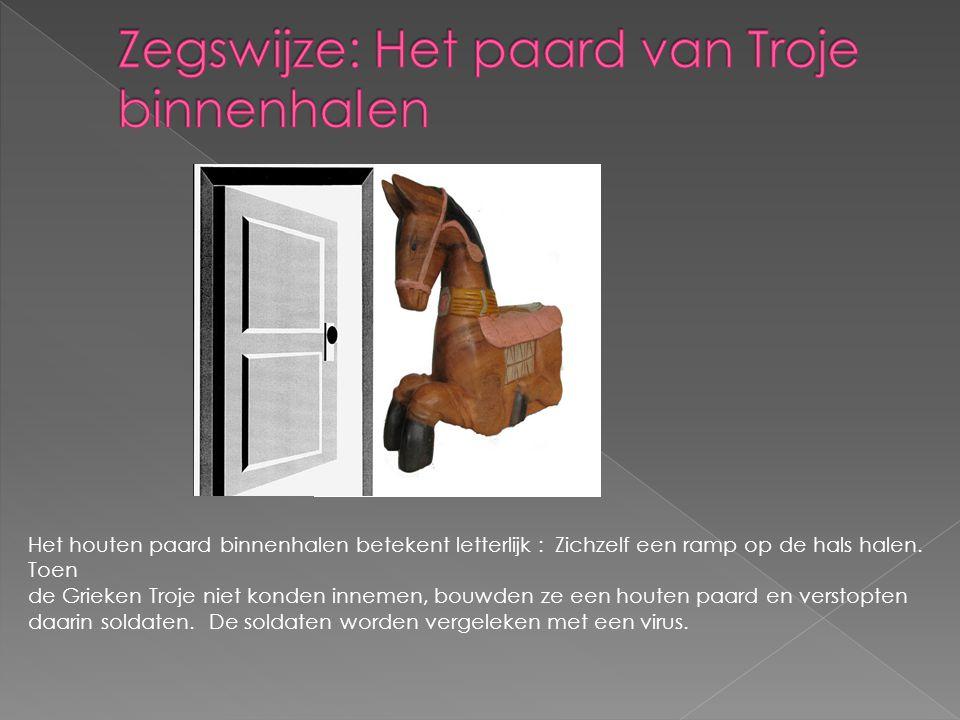 Het houten paard binnenhalen betekent letterlijk : Zichzelf een ramp op de hals halen. Toen de Grieken Troje niet konden innemen, bouwden ze een houte